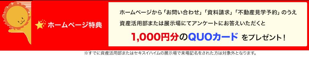 campaign_banner_f