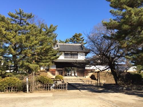 Tsuchiura6-5
