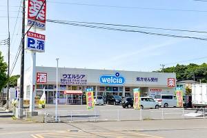 ウエルシア鹿嶋緑ヶ丘店(約400m 徒歩約5分)